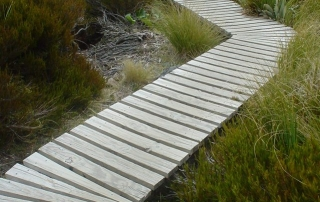2015-07-30 crooked-nature-path